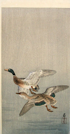 Ohara Koson, Two Mallards in Flight