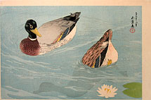 Hashiguchi Goyo Pair of Ducks