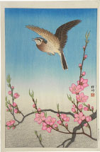 Ohara Koson Skylark in Flight Above Blossoming Peach