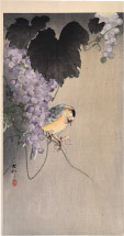 Ohara Koson Willow Tit Sitting on a Grape Vine with Insect