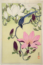 Ohara Koson Magnolia and Black-Winged Magpie