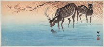 Ohara Koson Deer at Water's Edge