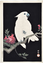 Ohara Koson Cockatoo and Pomegranate