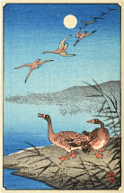 Ohara Koson White-fronted Geese Among Reeds and in Flight