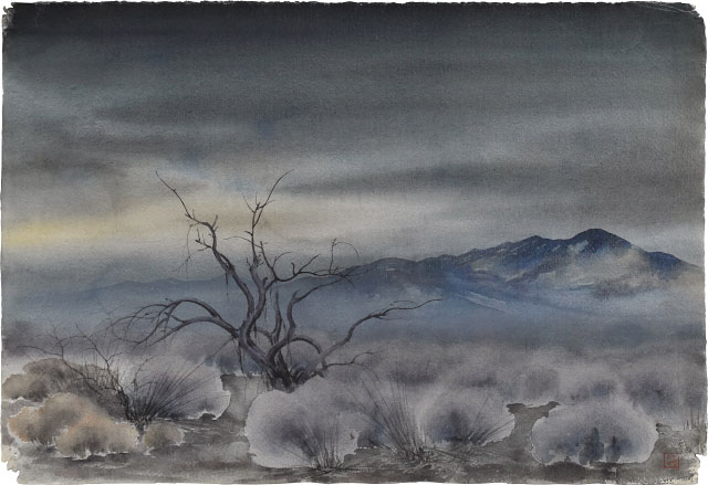 Kakunen Tsuruoka dark sky over mist on mesquite and brush