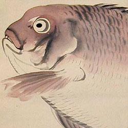 Yokoyama Seiki